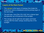 layers of the rain forest13