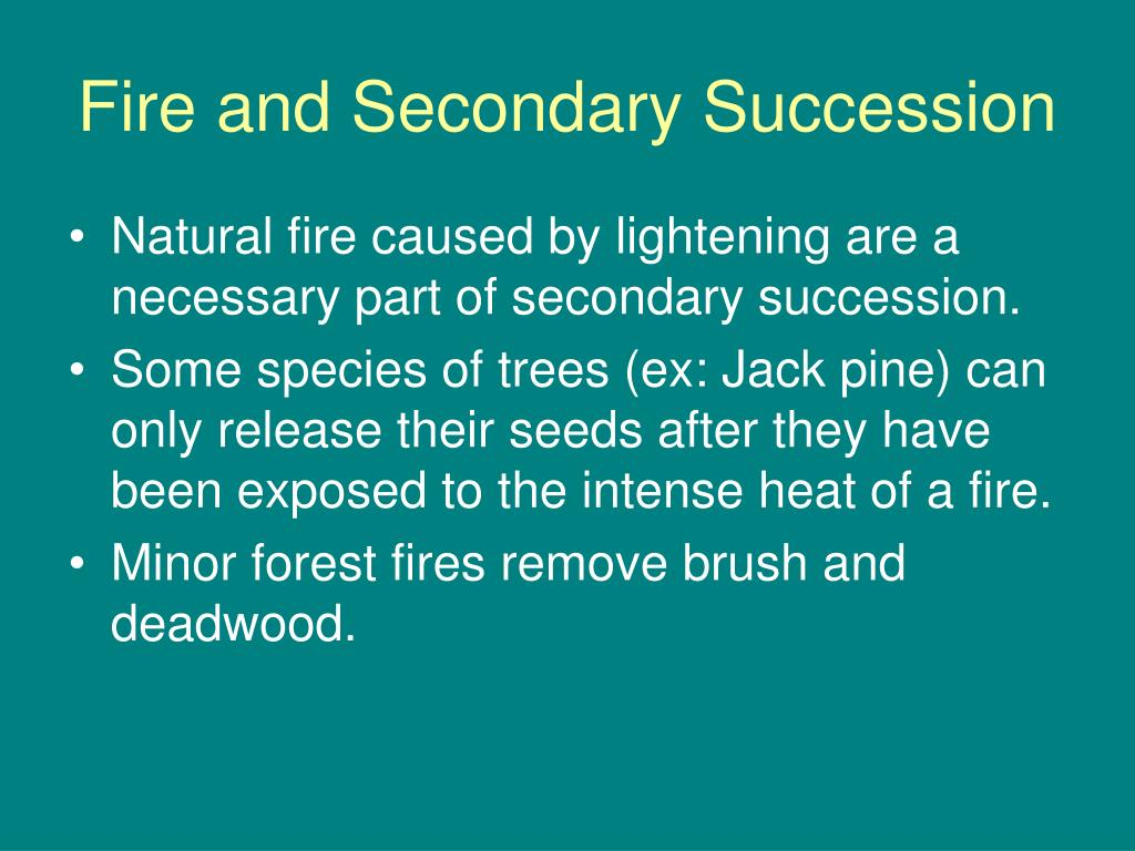 Fire and Secondary Succession