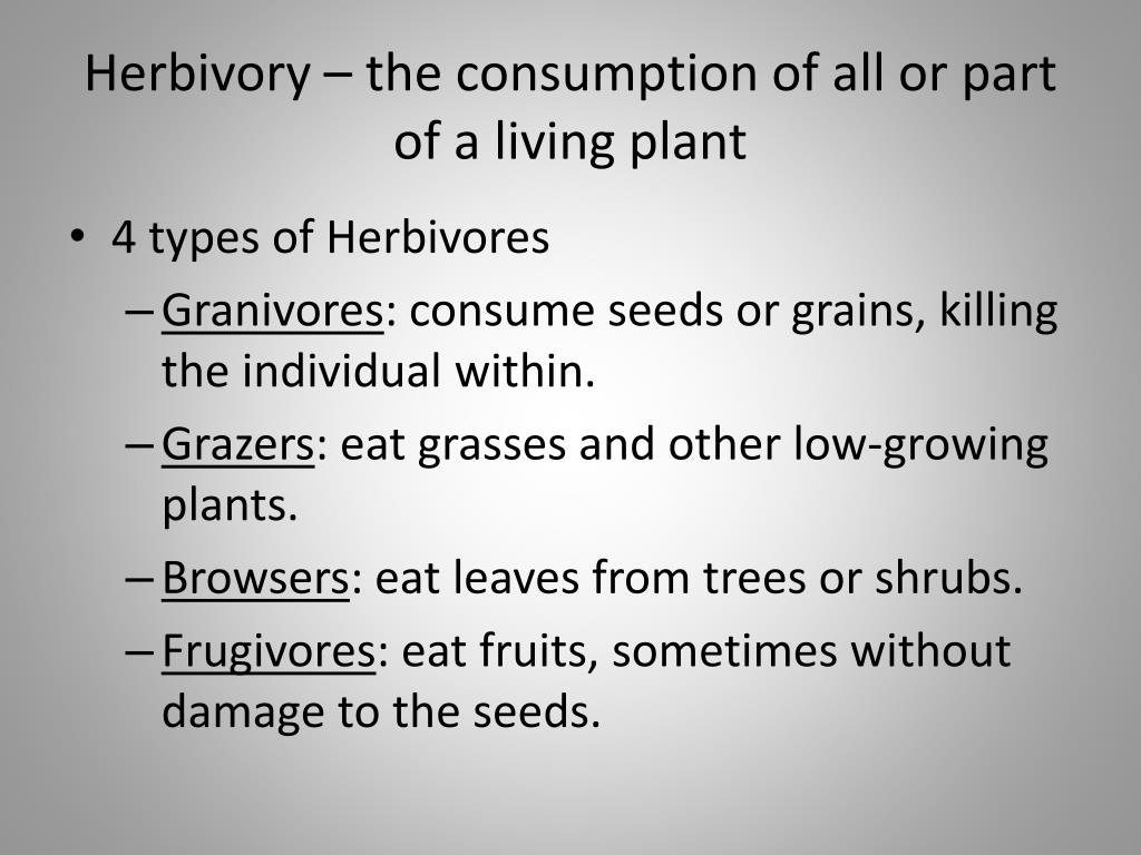 Herbivory – the consumption of all or part of a living plant