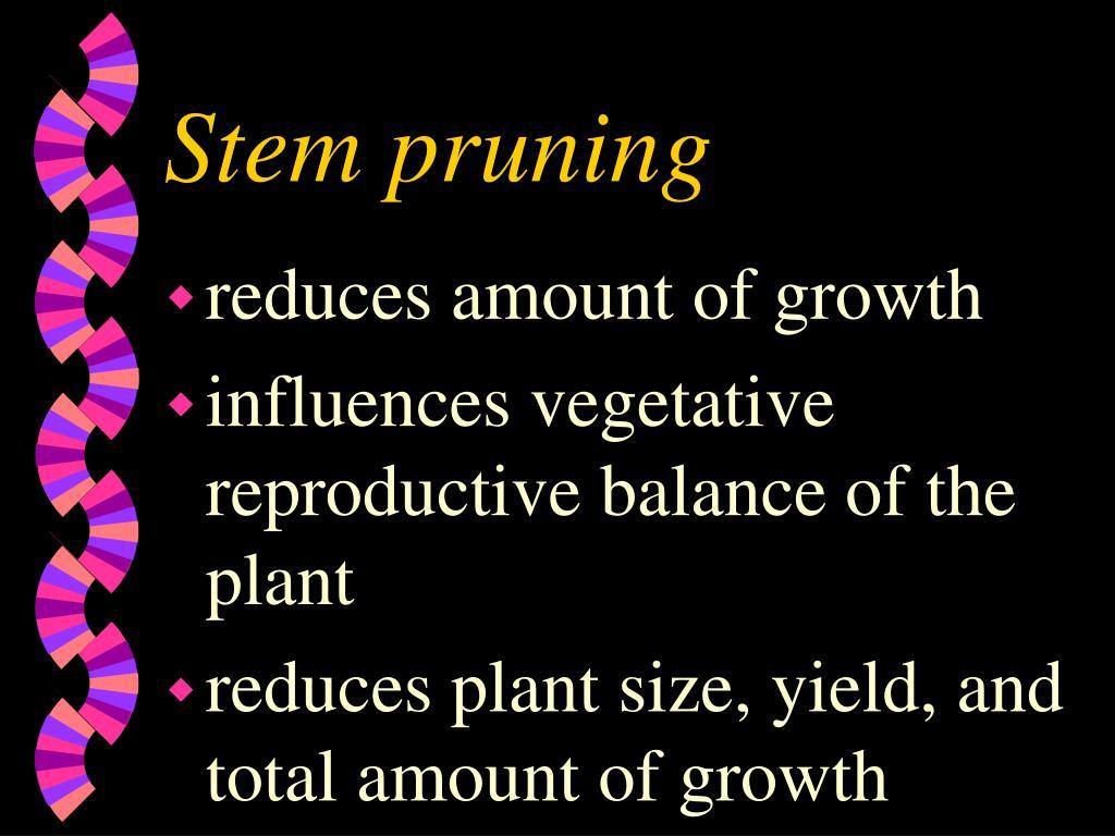Stem pruning