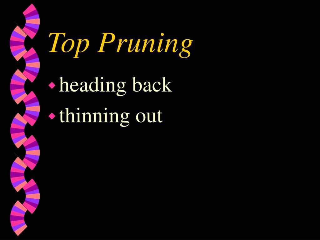 Top Pruning