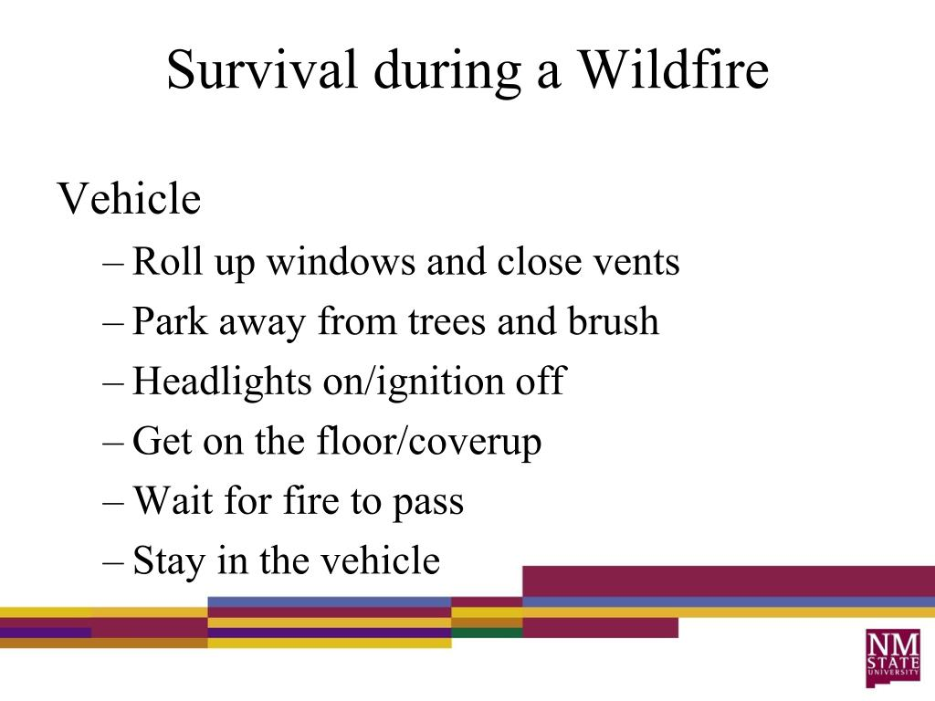 Survival during a Wildfire