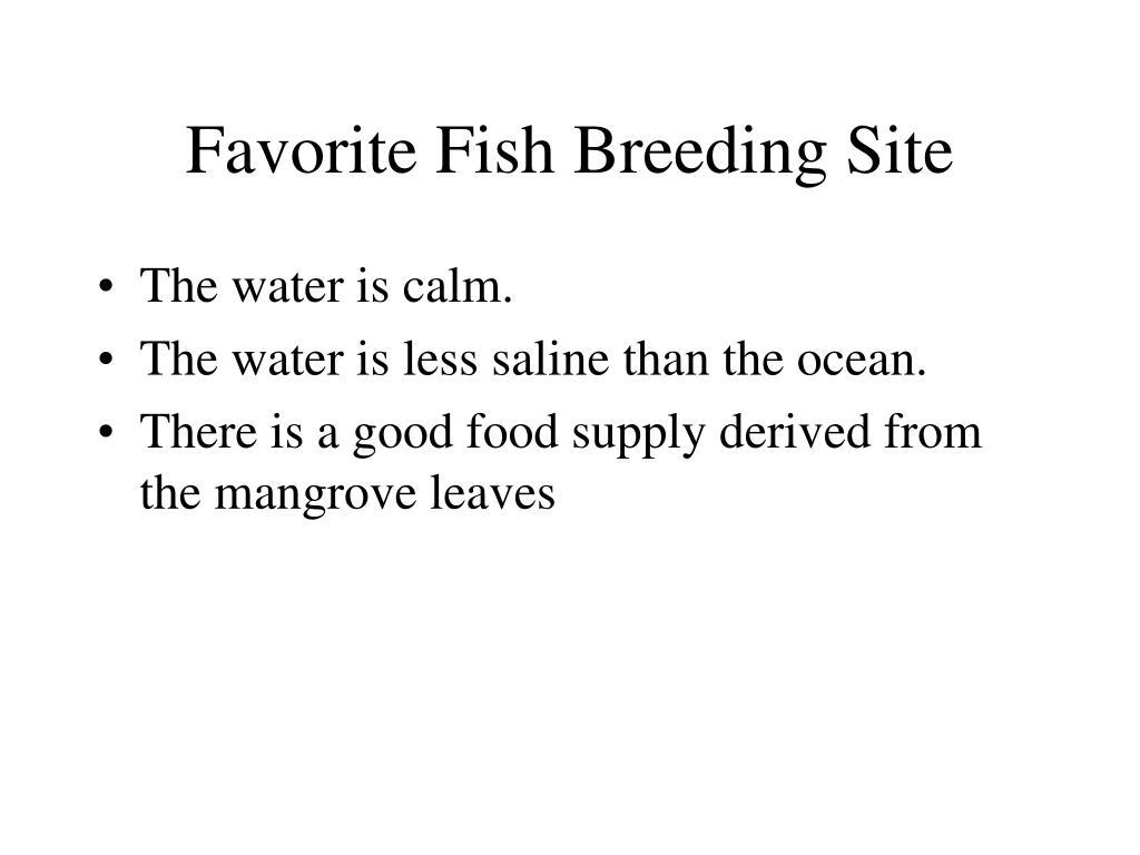 Favorite Fish Breeding Site