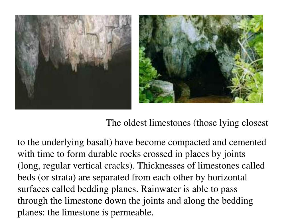 The oldest limestones (those lying closest to the underlying basalt) have become compacted and cemented with time to form durable rocks crossed in places by joints (long, regular vertical cracks). Thicknesses of limestones called beds (or strata) are separated from each other by horizontal surfaces called bedding planes. Rainwater is able to pass through the limestone down the joints and along the bedding planes: the limestone is permeable.