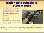 buffer strip suitable to sustain trees