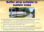 buffer strip suitable to sustain trees16