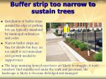 buffer strip too narrow to sustain trees
