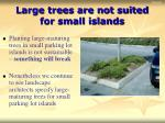 large trees are not suited for small islands