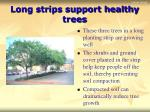 long strips support healthy trees