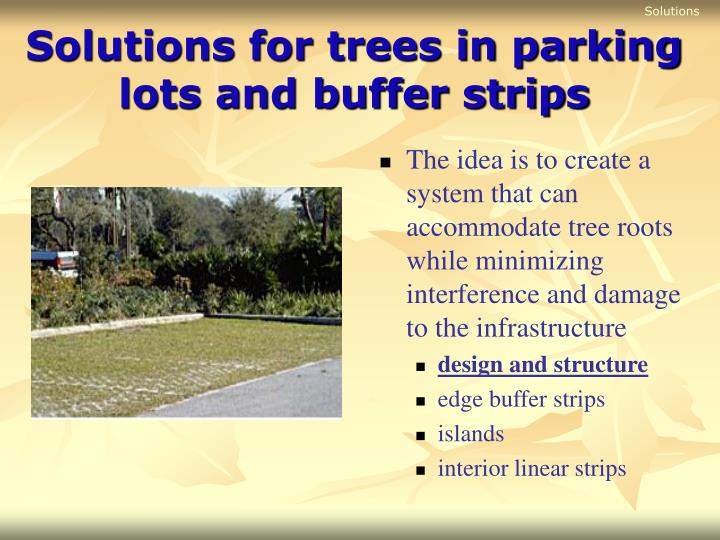 Solutions for trees in parking lots and buffer strips