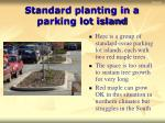 standard planting in a parking lot island