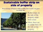sustainable buffer strip on side of property