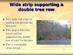wide strip supporting a double tree row