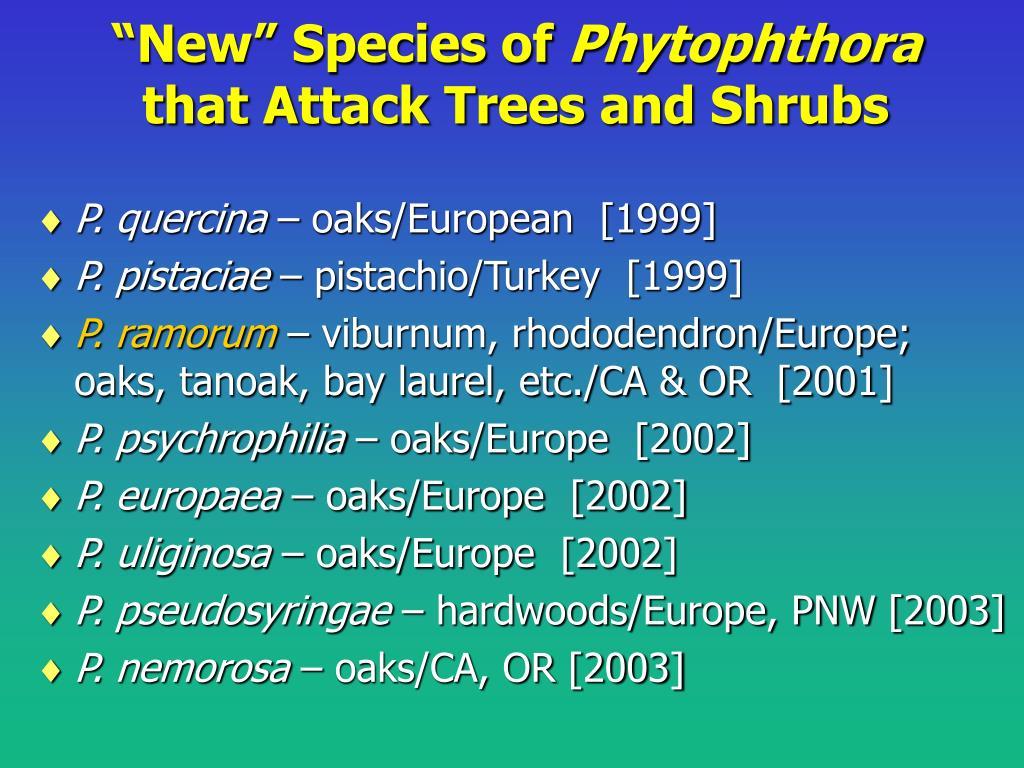 """""""New"""" Species of"""
