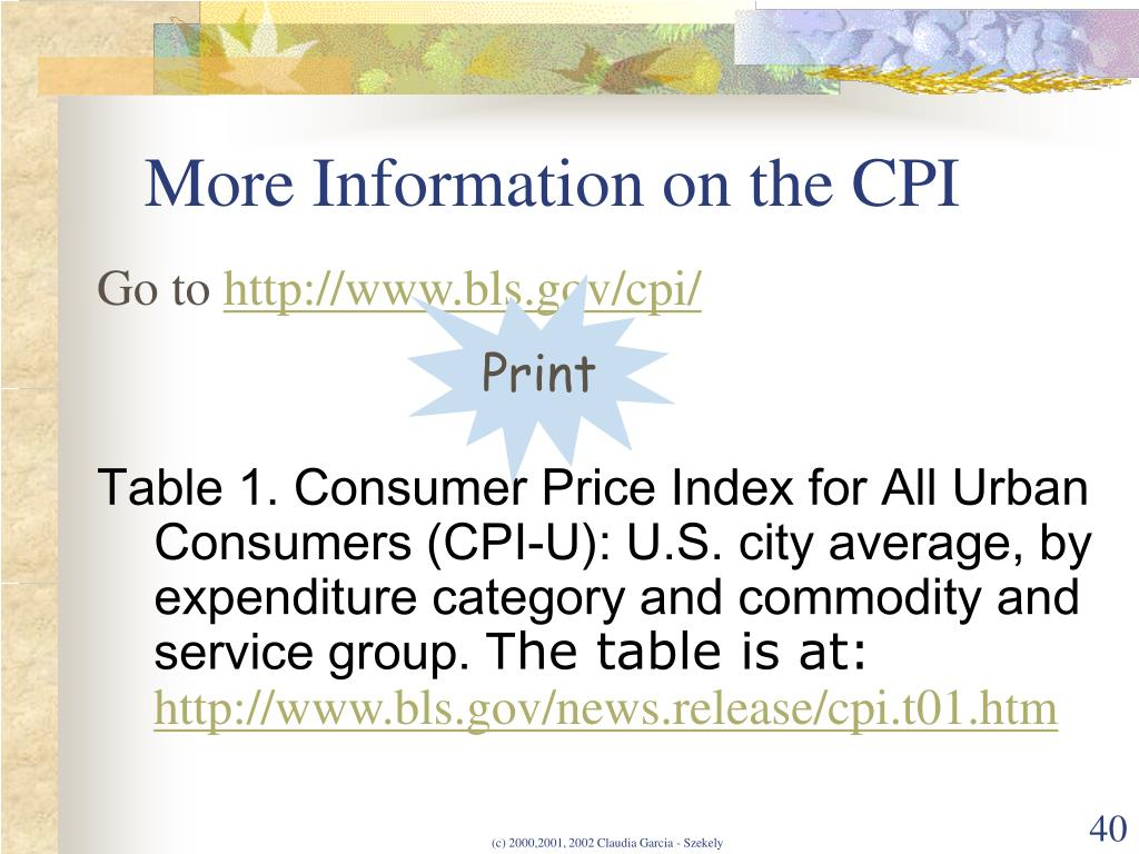 More Information on the CPI