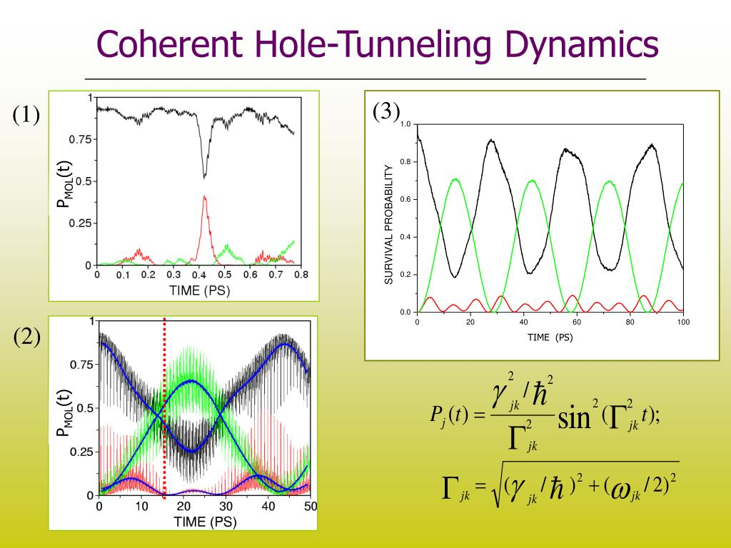 Coherent Hole-Tunneling Dynamics