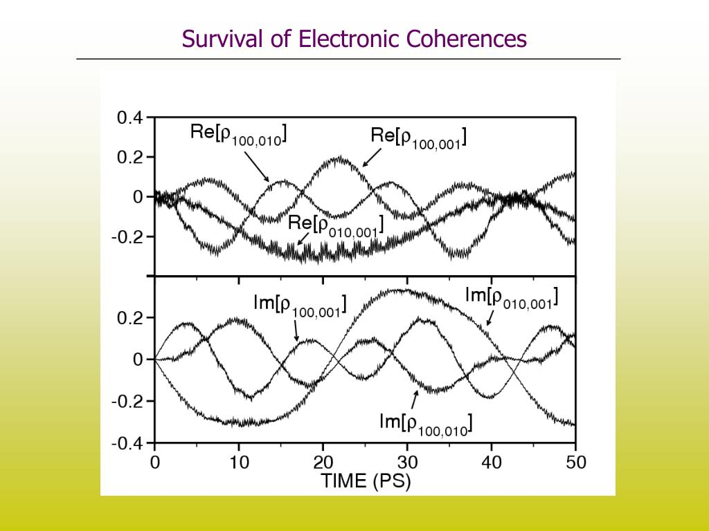 Survival of Electronic Coherences