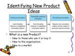 identifying new product ideas