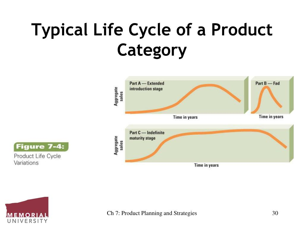 Typical Life Cycle of a Product Category