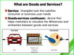 what are goods and services