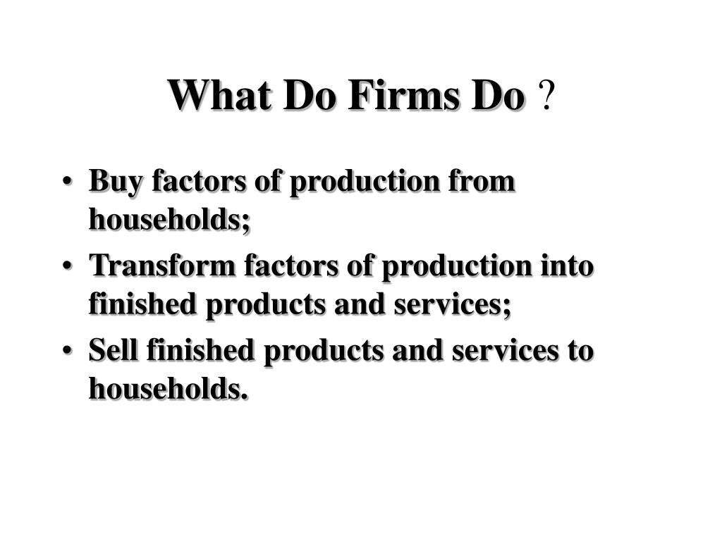 What Do Firms Do