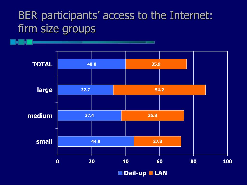 BER participants' access to the Internet: firm size groups