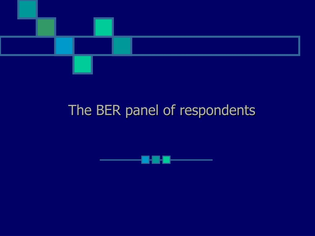 The BER panel of respondents