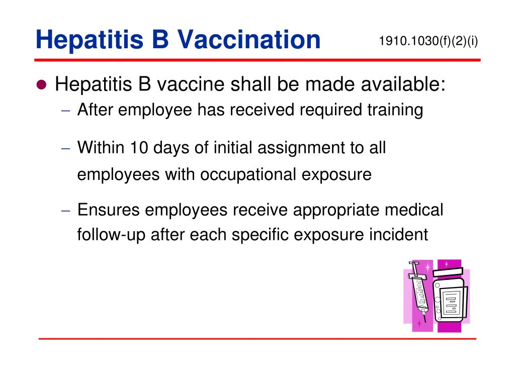 Hepatitis B vaccine shall be made available: