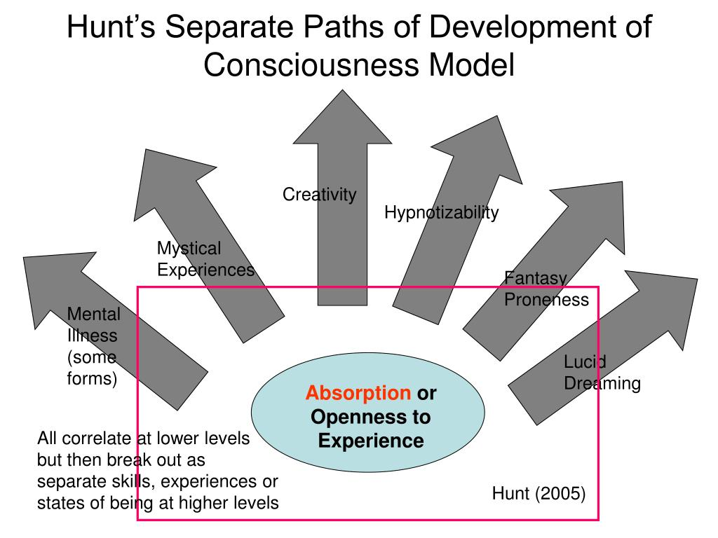 Hunt's Separate Paths of Development of Consciousness Model