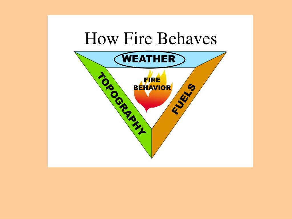 How Fire Behaves