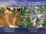 damaging winds