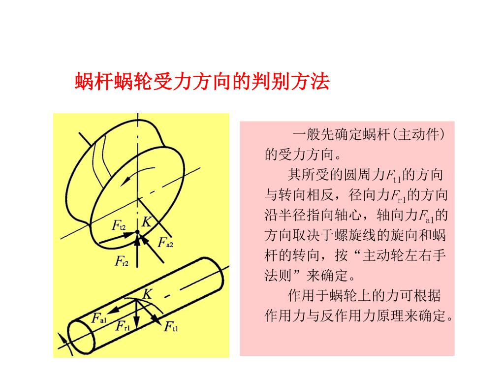 蜗杆蜗轮受力方向的判别方法