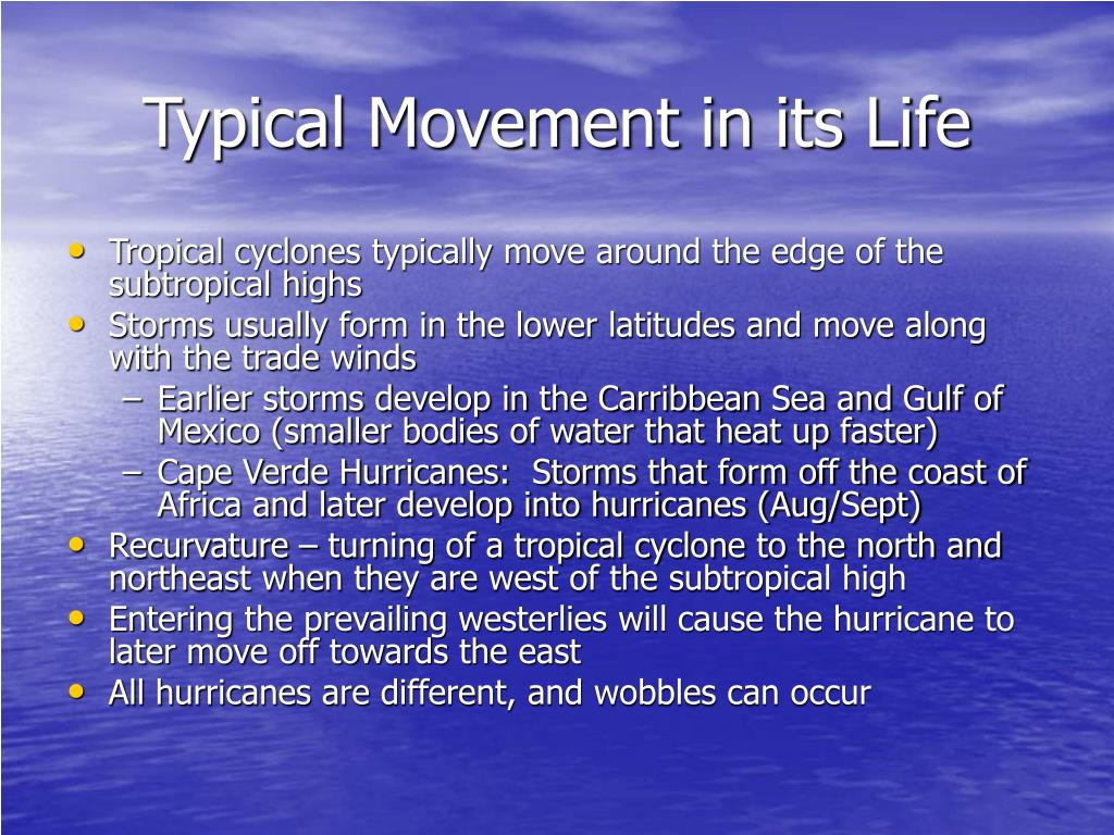 Typical Movement in its Life