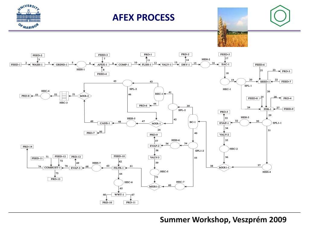 AFEX PROCESS