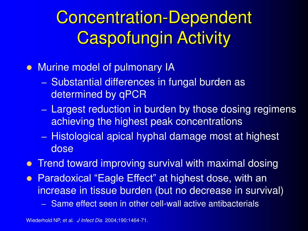 Concentration-Dependent Caspofungin Activity