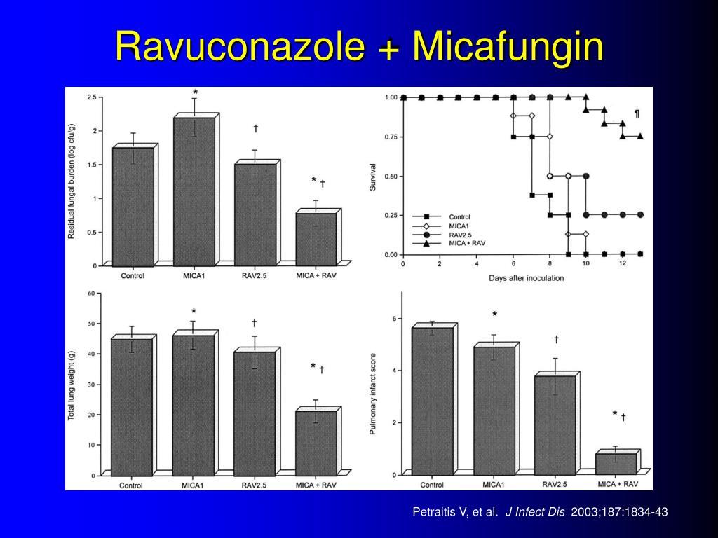 Ravuconazole + Micafungin