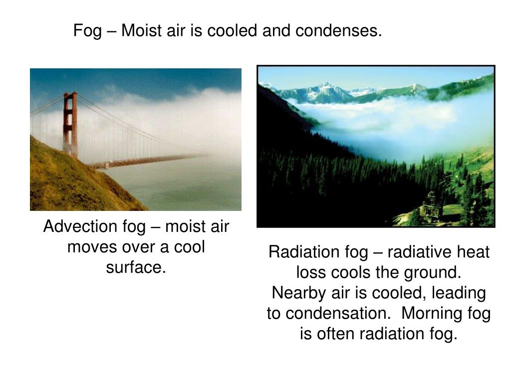 Fog – Moist air is cooled and condenses.