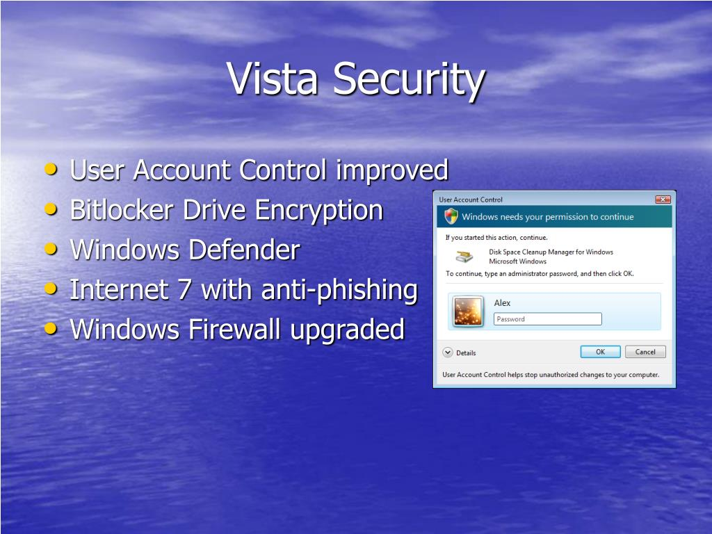 Vista Security