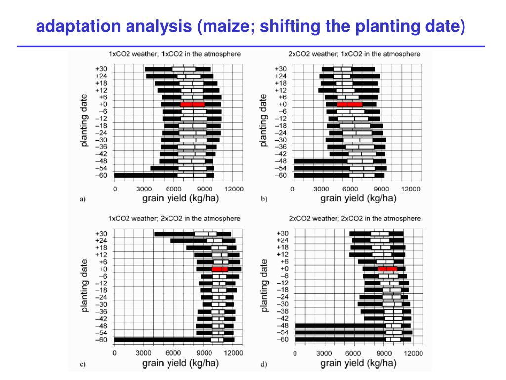 adaptation analysis (maize; shifting the planting date)