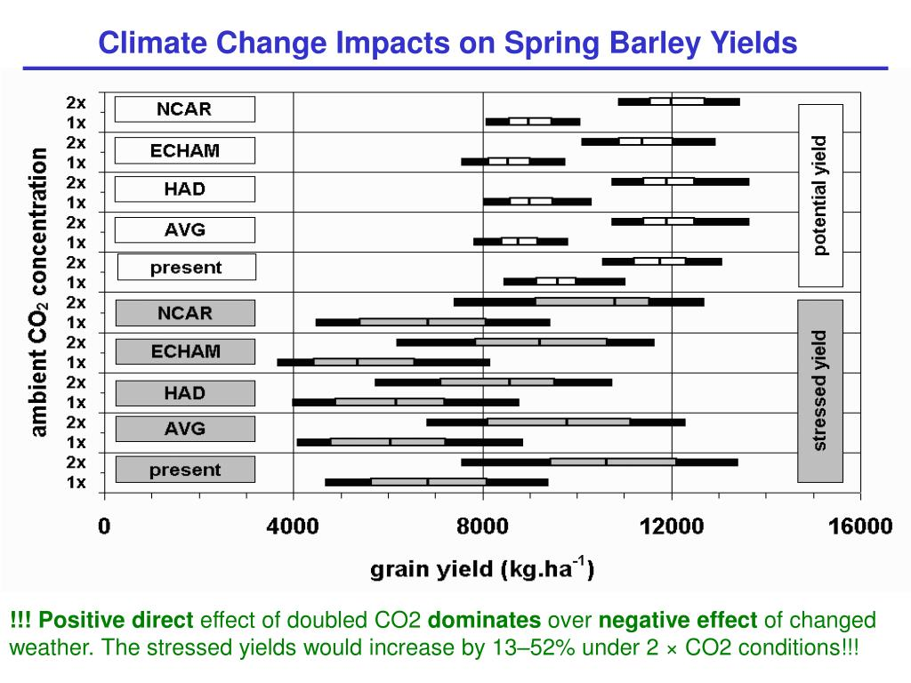 Climate Change Impacts on Spring Barley Yields