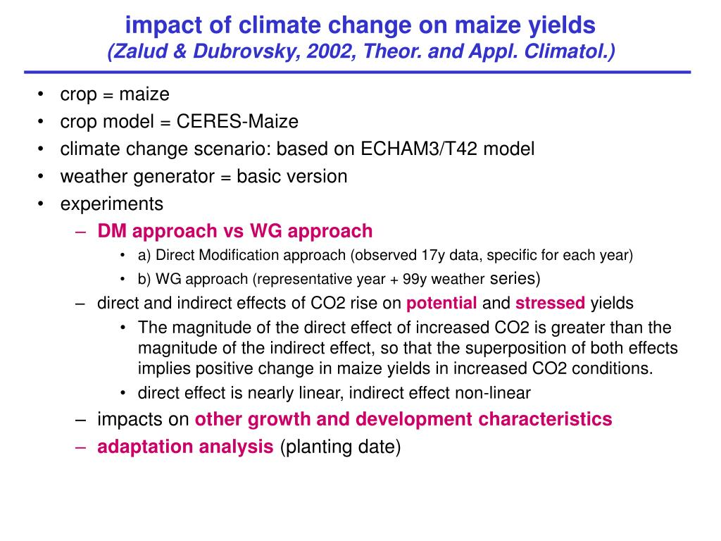impact of climate change on maize yields