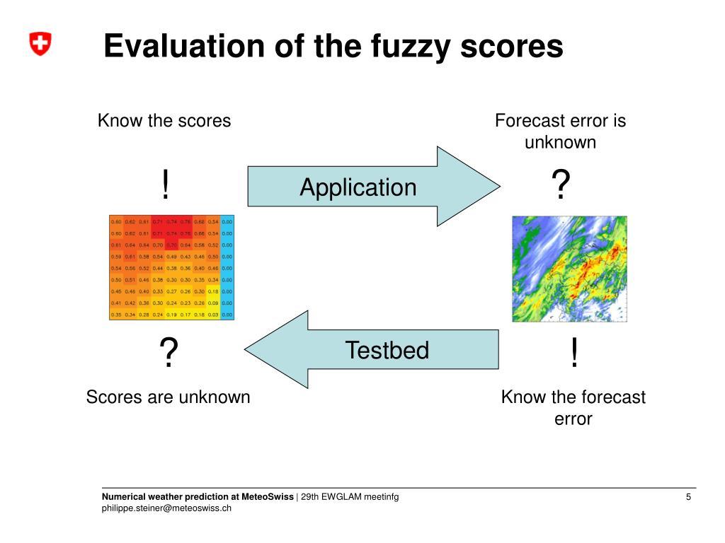 Evaluation of the fuzzy scores