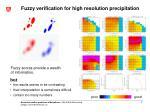 fuzzy verification for high resolution precipitation