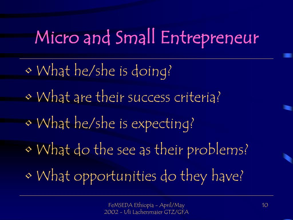Micro and Small Entrepreneur