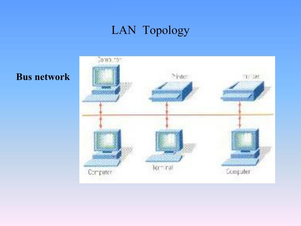 LAN  Topology
