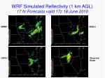 wrf simulated reflectivity 1 km agl 17 hr forecasts valid 17z 18 june 2010