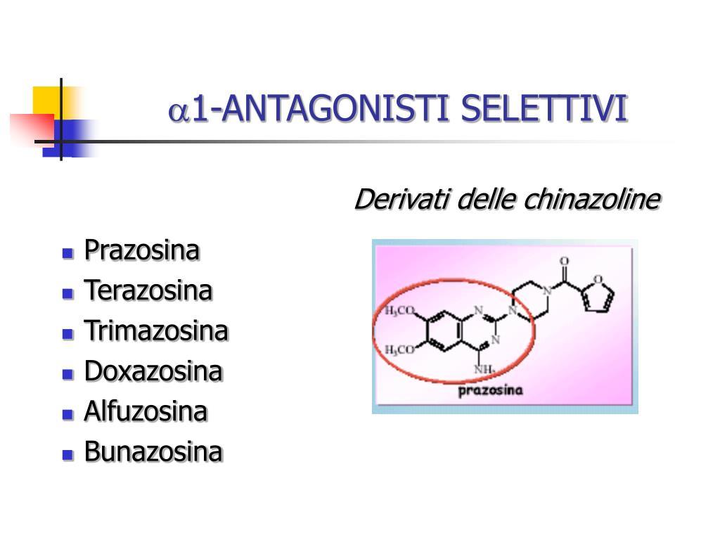 PPT - ANTAGONISTI ADRENERGICI PowerPoint Presentation - ID..