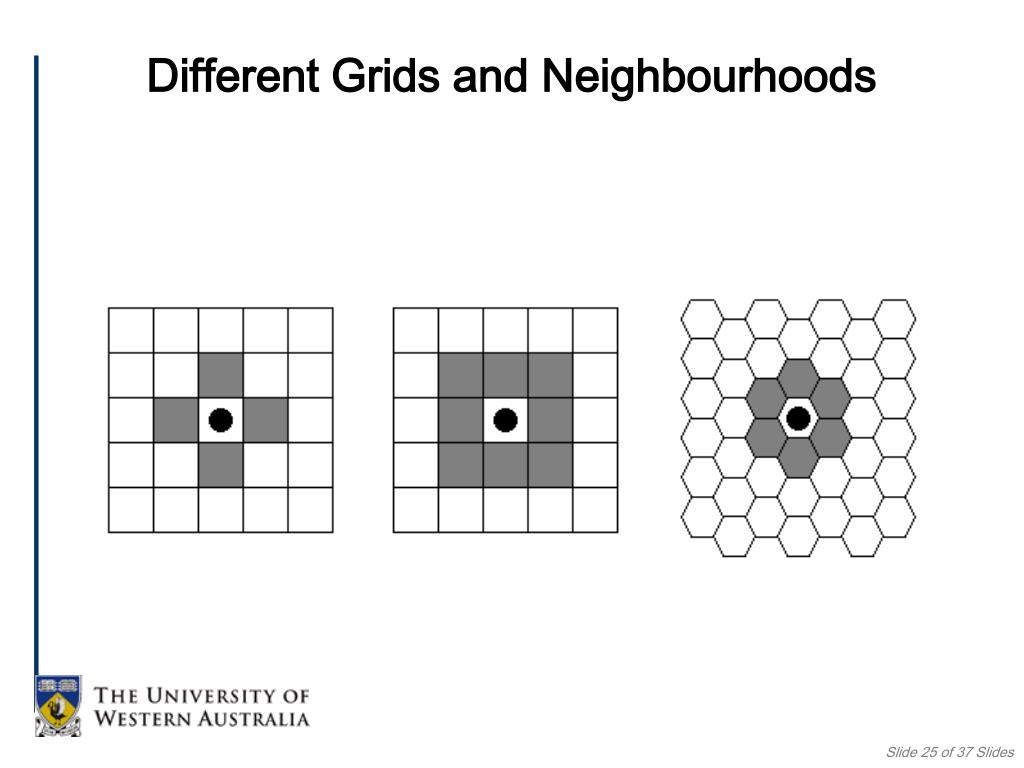 Different Grids and Neighbourhoods