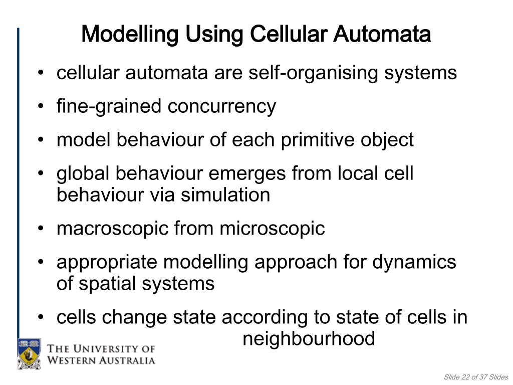 cellular automata are self-organising systems
