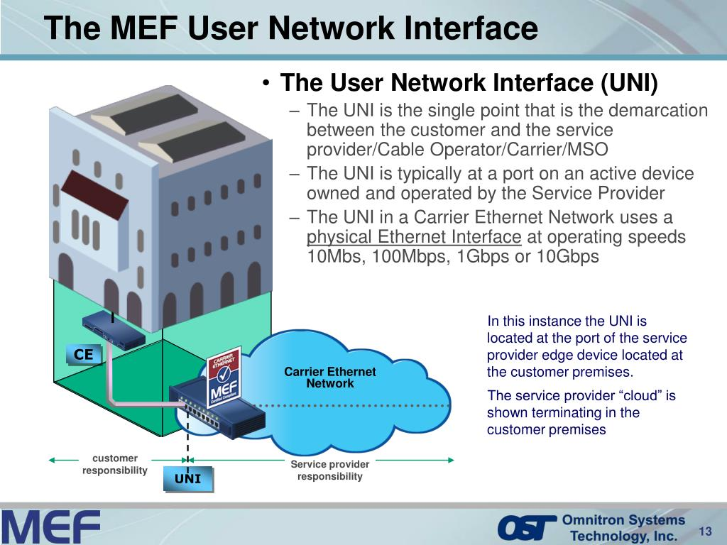 The User Network Interface (UNI)